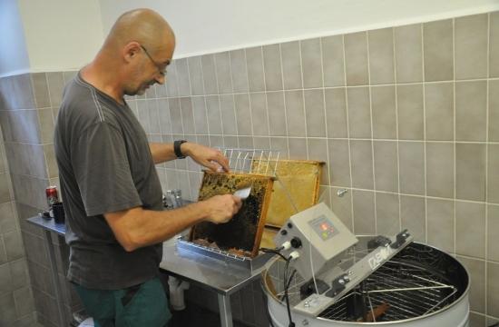 Víčka, složená zejména z vosku, musí dolů, abymohl med dobře odtékat.