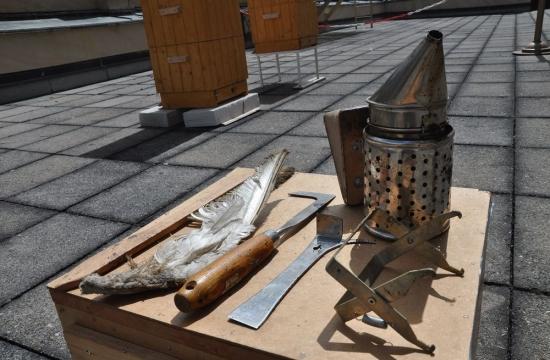 Tak pilně, že je čas naprvní rudolfinské medobraní. Nástroje jsou připraveny.